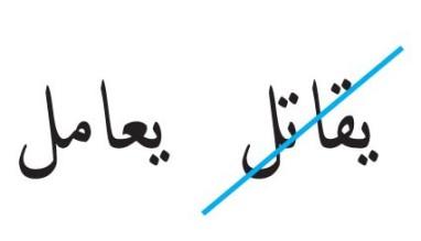 mardin fatwa arabic